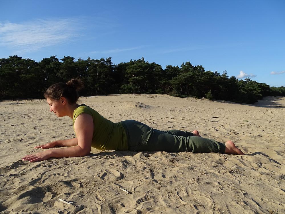 yin yoga asana sphinx