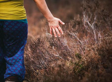 Yoga & Brein | Voelen / Lichaam & propriocepsis