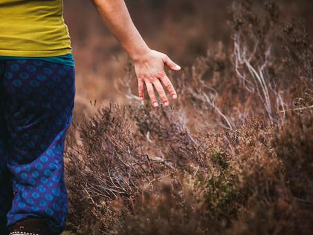 Yoga & Brein   Voelen / Lichaam & propriocepsis
