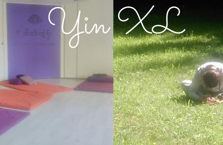 Yin XL