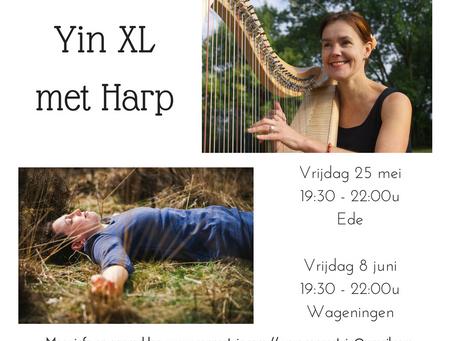 Yin XL met harp