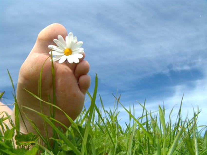 Blote voeten in het gras