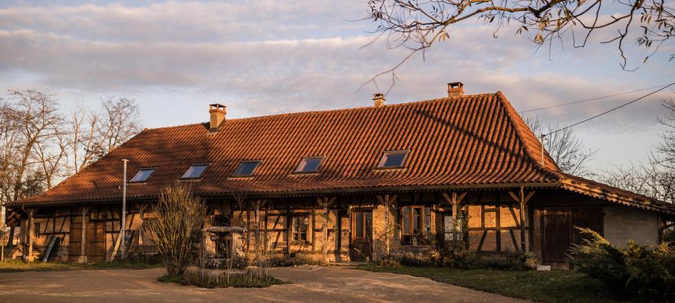 Haus unter der Weide am Abend