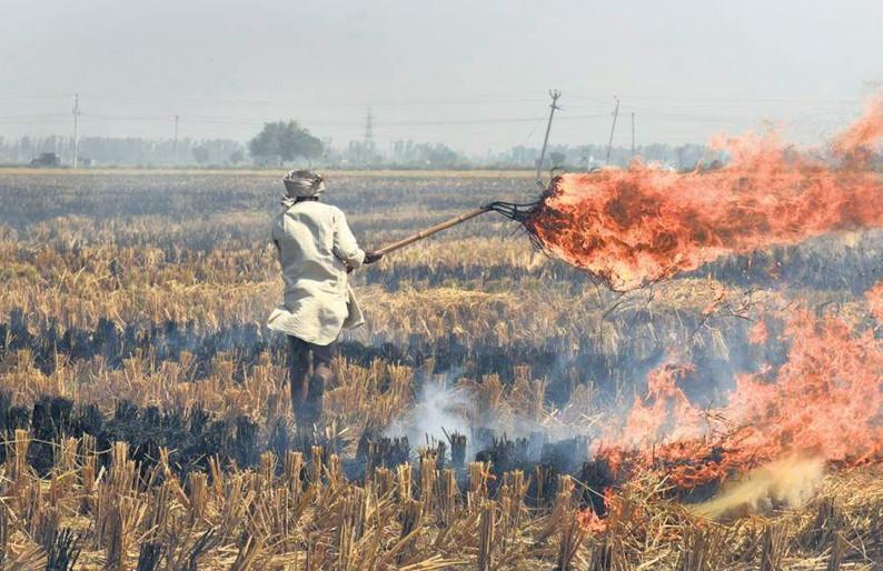 agri burning .jpg