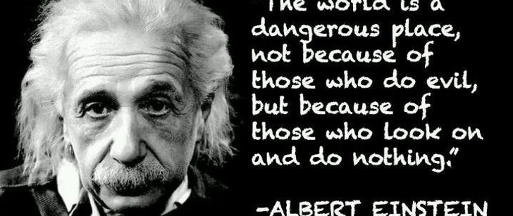Albert Einstein - World is dangerous because of those who do nothing