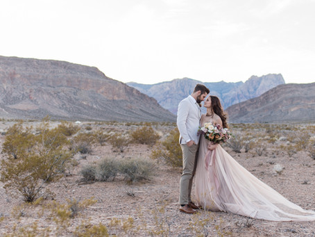 Cactus Joe's Styled Shoot| Las Vegas Wedding and Elopement Photographer