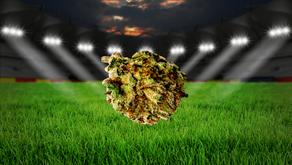 NFL: No Medical Marijuana Allowed for Players