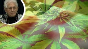 U.S. Rep Opposed Marijuana Legalization Invests in Cannabis Stock