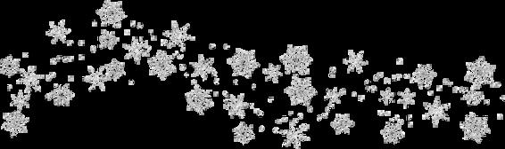 snowflakes.png