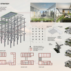 Structural Study