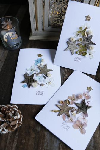   卡片   樹皮星星永恆耶誕賀卡 Birch Bark Star Christmas Tree Card