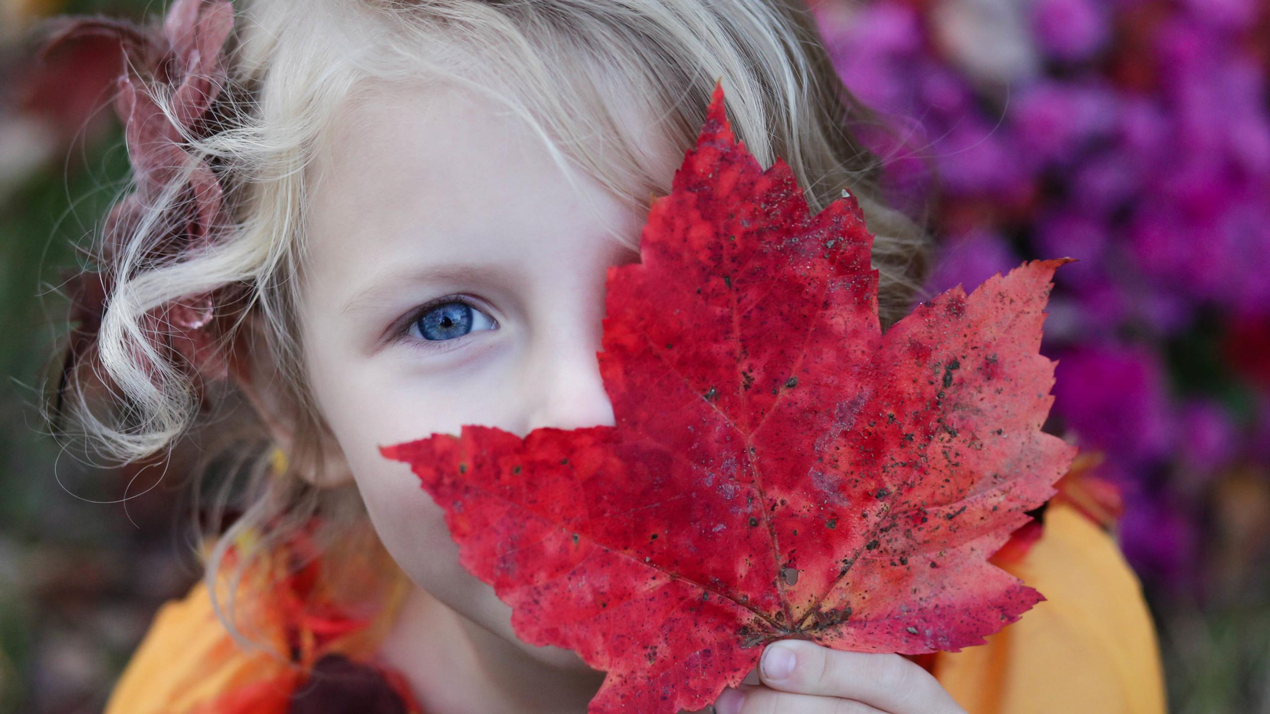 Chica con la hoja del otoño