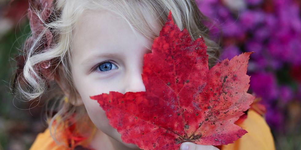 Baby + Toddler Leaf Hunt!