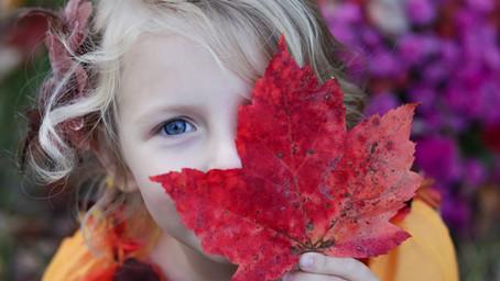 L'automne, la saison du changement par excellence