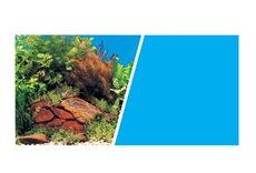 """Marina Aquarium Background 18"""""""