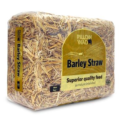 Pillow Wad Barley Straw 1kg