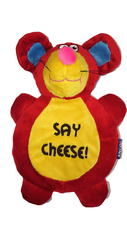 Ancol Mouse Say Cheese Dog Toy