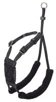 Non-Pull Dog Harness by Company of Animals