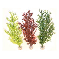 Water Fern Flexible fish tank decoration by Sydeco