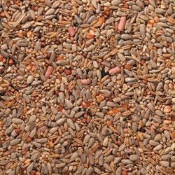 J&J Premium Wild Bird Seed Husk free with Suet 1kg, 3kg, 20kg