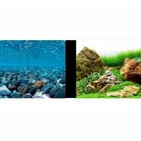 """Marina Aquarium Background 12"""""""