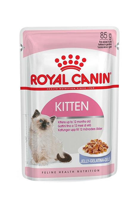 Royal Canin Kitten in Jelly Wet Pouch Cat Food