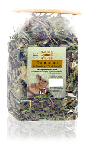 Burns Dandelion 100g
