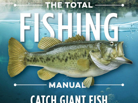 The best complete Fishing guide for beginners.