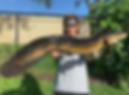 Bullseye-snakehead.PNG