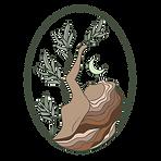 Saoirse Full Logo Dark.png