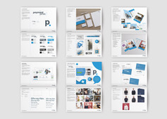 Pages taken from the Paymentsense brand guidelines