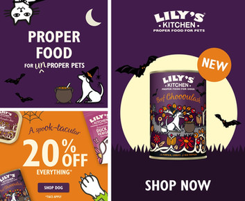 Full halloween campaign, featuring halloween launch campaign, limited edition recipe campaign and promotional campaign