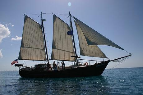 Pirates-Lady-683x455.jpg