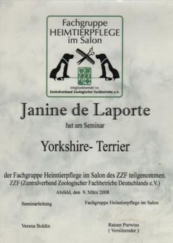 Seminar Yorkshire Terrier
