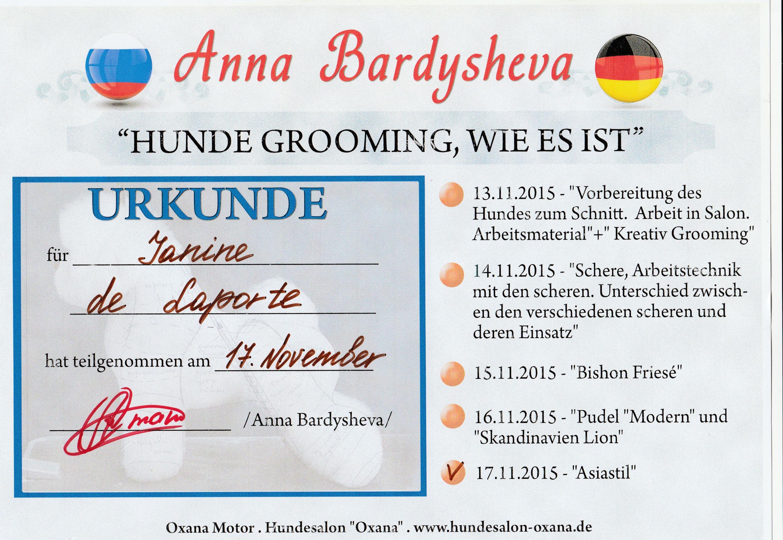 Urkunde Seminar Anna Barysheva