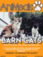 Barn Cats.jpg