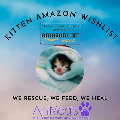 Kitten Amazon Wishlist.png