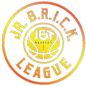 Brick League Basketball