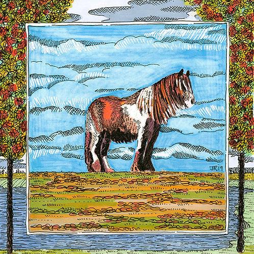 'Galloway Horse'