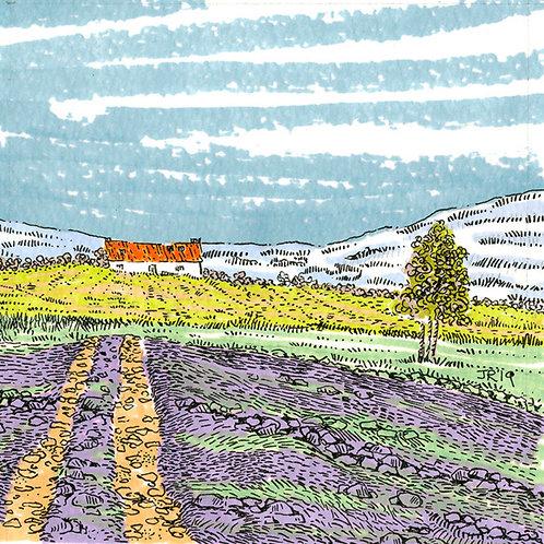 'In the Field'