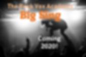 BIG SING.png