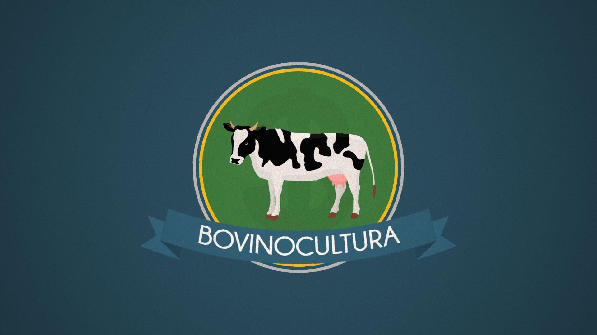 Bovinocultura no Brasil