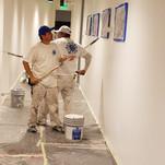 Painting Interior office walls