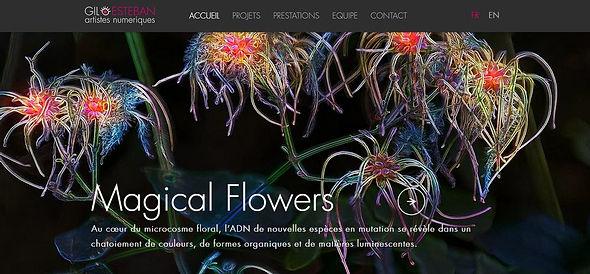 Homepage2-GilEsteban.jpg