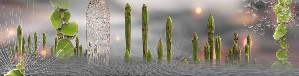 Blowing-seed-KS-Gilesteban-copyright.jpg