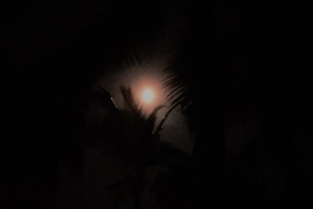 Pleine Lune vue depuis la palmeraie à Candolim, Goa. By Lunabee