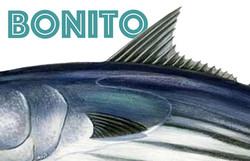 PosterBonito1