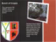 NHS badge 5.PNG