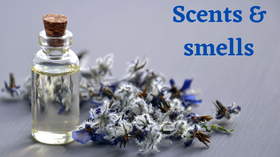 Scents & smells