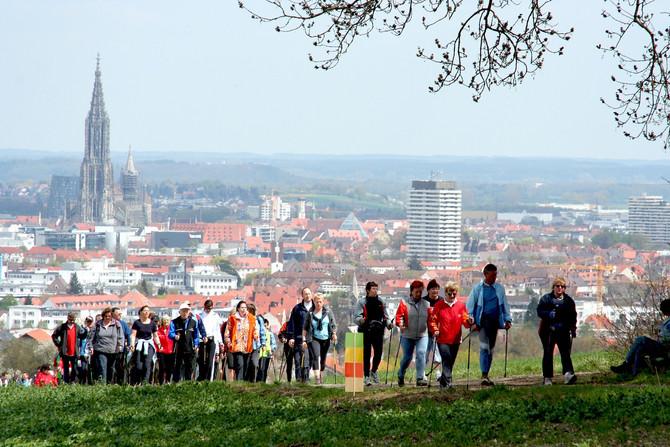 Исследования по влиянию скандинавской ходьбы на лимфедему.